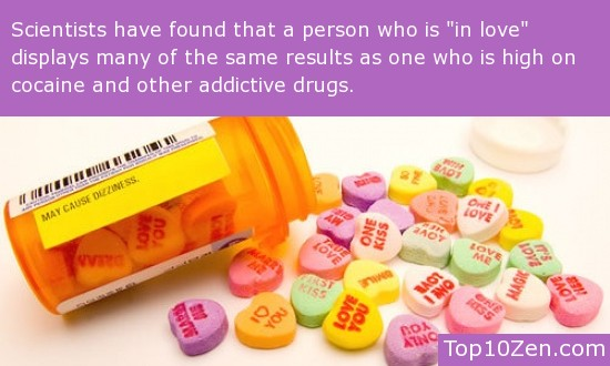 Love can be addictive.