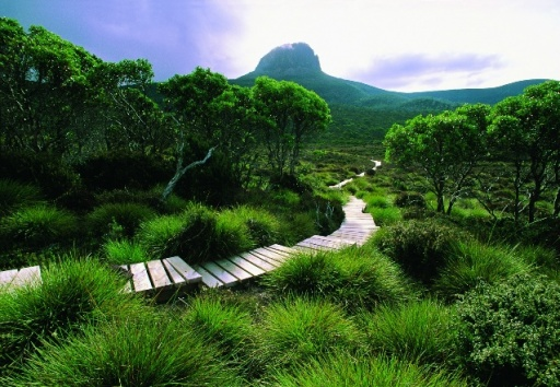 Tasmanian Wilderness, Australia